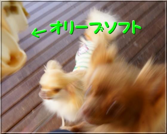 098_20120604012755.jpg