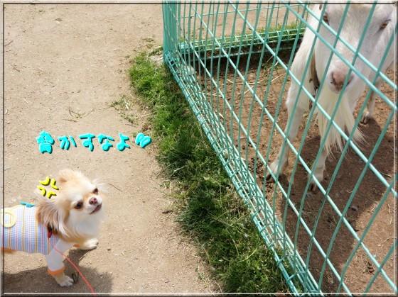 099_20120514211247.jpg