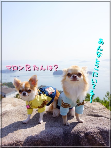 110_20121124203308.jpg