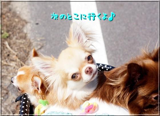 117_20120920203425.jpg