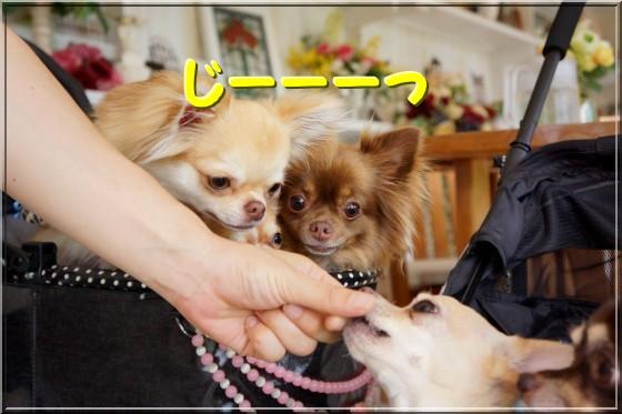 125_20120718232516.jpg