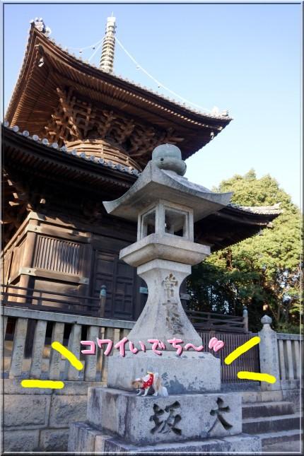 127_20121117114932.jpg