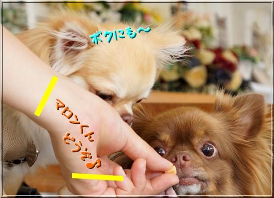128_20120718232516.jpg