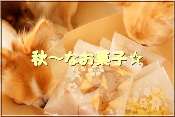 206_20121013145938.jpg