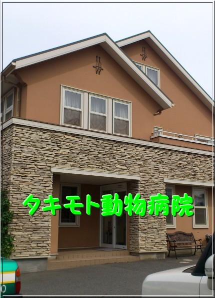 DSC_0329_20120924215008.jpg