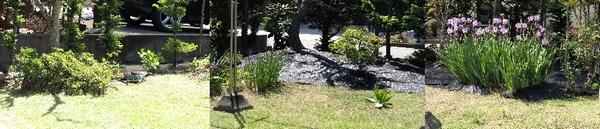 草取りが完了した庭②2012.5.23