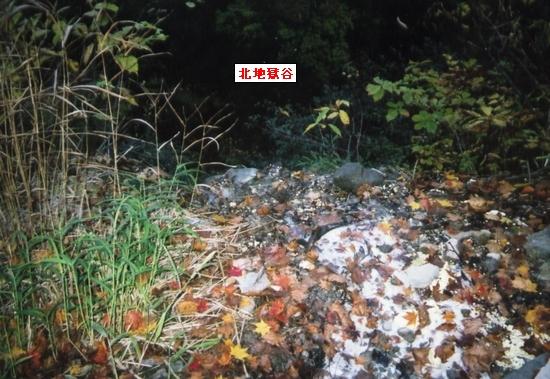 妙高検証源泉~谷