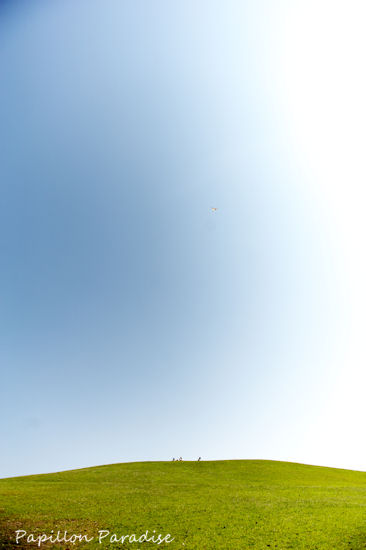 2012052706.jpg