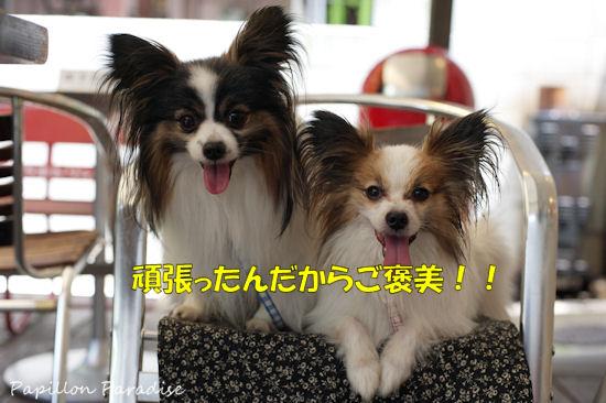 2012071506.jpg