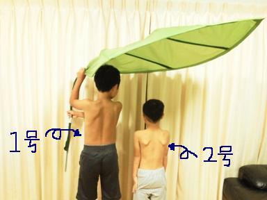 NEC_0373_20121010101514.jpg