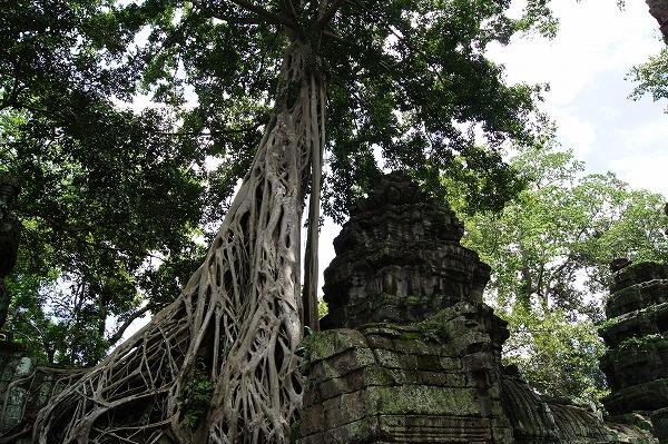 カンボジア26