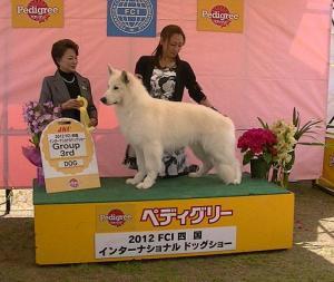 FCI四国インターナショナルドッグショー2012★ジャンゴ★
