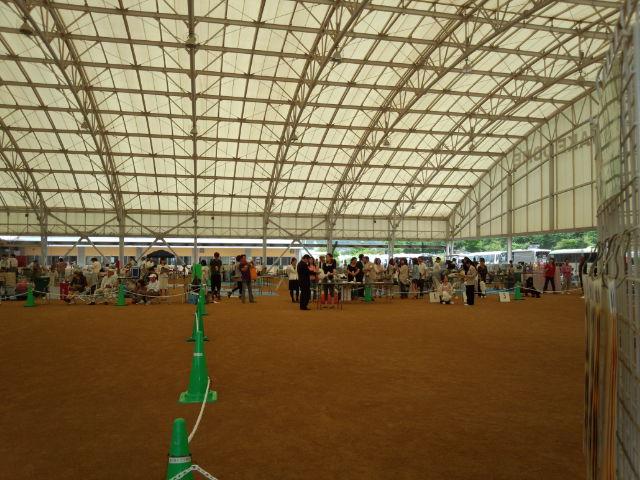 【ドッグショー】岡山県玉野愛犬クラブ展