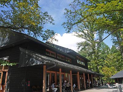 軽井沢ハルニレ