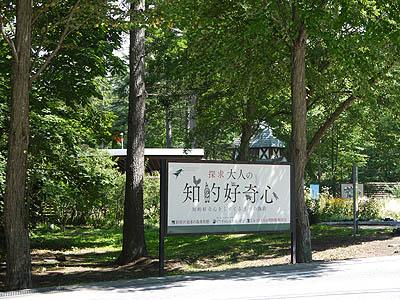 軽井沢-知的