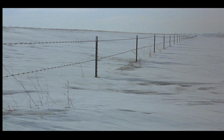 Fargo14.jpg