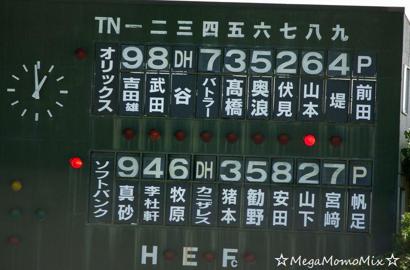 IMGP1157.jpg