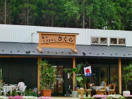 花のレストラン さくら