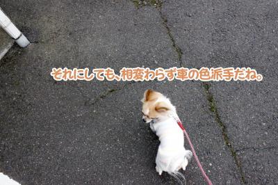 2_convert_20130321130859.jpg