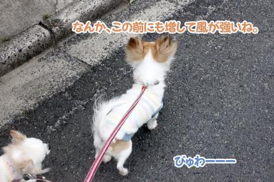 3_convert_20130321130910.jpg
