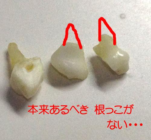 201282732.jpg