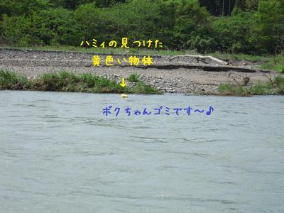IMG_4775_20120506202622.jpg
