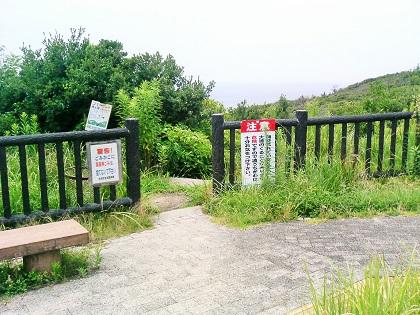 20141102白浜・オオミガハイ9