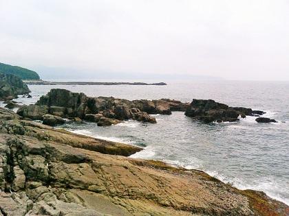 20141102白浜・オオミガハイ6