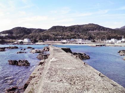 20141107江住漁港1