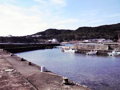 20141107江住漁港5