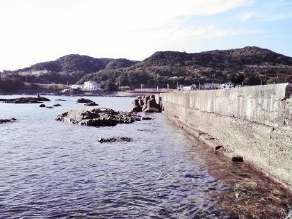 20141107江住漁港2