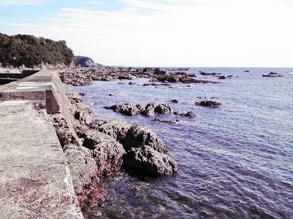 20141107江住漁港3