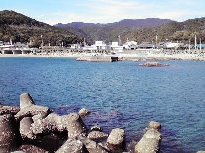 20141107江住漁港8