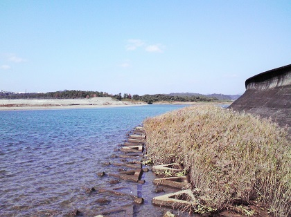 20141114富田川河口3