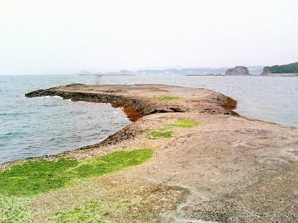 20141116天神崎・大鼻1
