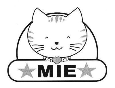 MIE初代ロゴ