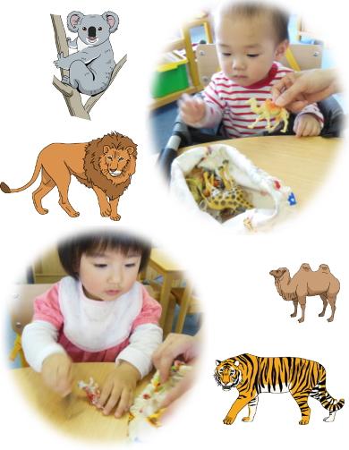 リアル動物教材 幼児教室MIE