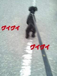 174538-picsay.jpg