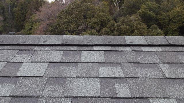 屋根葺完了4 (640x360)