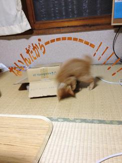 urayama---02.jpg