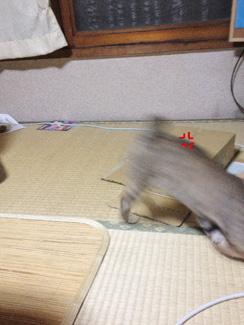 urayama---07.jpg