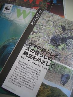 WWFクマ