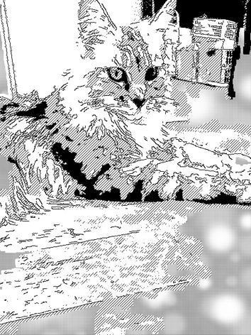 sakuya01.jpg