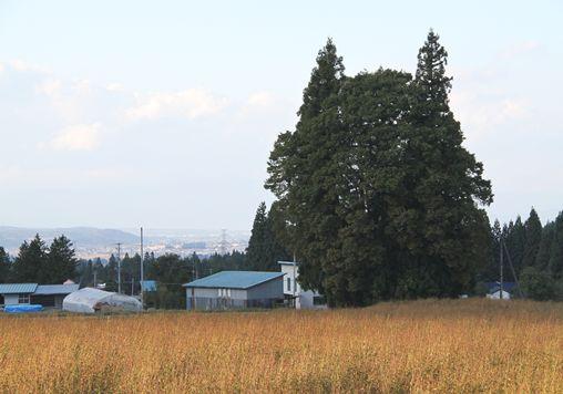 20121021-03.jpg