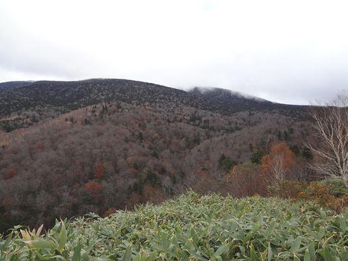 20121031-12.jpg
