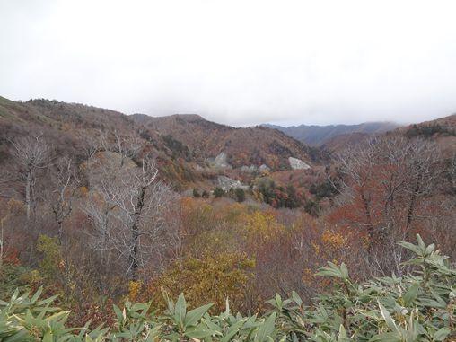 20121031-13.jpg