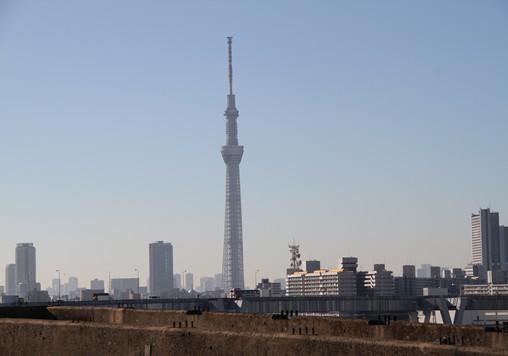20121110-02.jpg