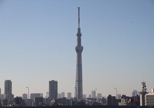 20121110-03.jpg