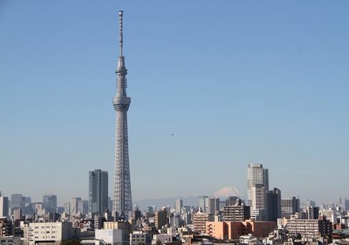 20121110-05.jpg