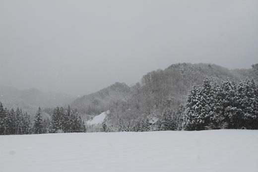20130101-06.jpg